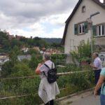 Hirschhorn_2020_005