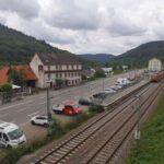 Hirschhorn_2020_021