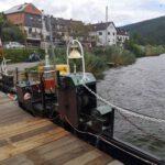 Hirschhorn_2020_028