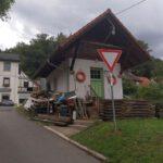 Hirschhorn_2020_032