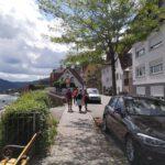 Hirschhorn_2020_051